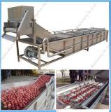 De Leverancier van China van de Automatische Schoonmakende Machine van de Was van het Fruit