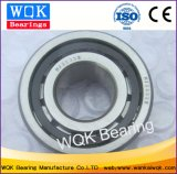 Roulement Wqk NJ2203e Cage de roulement à rouleaux cylindriques en acier