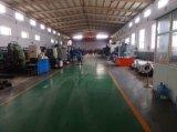 Tipo accoppiamento della Cina Tanso Tacf di rendimento elevato del disco