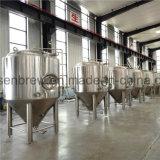 任意選択銅のシェルが付いているPLCが付いている2つの容器が付いている新しい工場価格500Lマイクロビールビール醸造所の機械装置のプラント