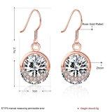 925 echte Silver De toevallige Stijl Zircon nam Goud Geplateerde Earring&#160 toe;