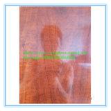 Heet verkoop MDF van de Melamine van 5~18mm Hoge Glanzende Marmeren