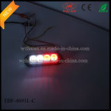 Dos colores 1X4 Lightheads para Surface Car and Grill Monte