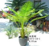 Напольные или крытые искусственние заводы малой пальмы 1073-10-1