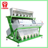 Máquina de classificação da cor para o arroz perfumado tailandês