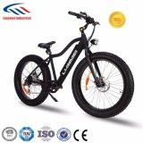 48V750W電気バイク26inch En15194
