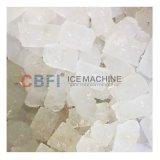 Cbfi пищевые первоклассными ресторанами льда
