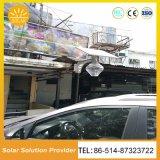 lumières actionnées solaires de jardin des éclairages LED 12V18W solaires