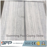 Telhas de mármore brancas da tampa da piscina das pedras lidando da piscina