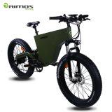 脂肪質のタイヤ山の電気自転車の強力な電気バイク