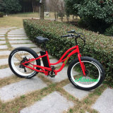 여자를 위한 Style Mountain Electric Bicycle 유럽 숙녀