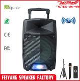 Nuovo Arraival buon altoparlante sano della batteria della superpotenza di Feiyang con il LED SL12-11