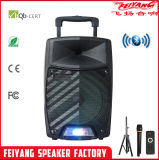 Feiyang LED SL12-11が付いている新しいArraivalのよく健全な超出力電池のスピーカー
