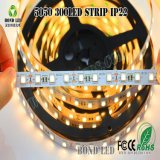 12V SMD 유연한 방수 LED 밧줄 빛