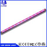 9W 12W 18W 24W Full Spectrum T5 T8 LED Tubo de luz crescer