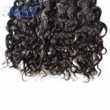 Tessuto ondulato naturale malese estratto doppio dei capelli umani del Virgin