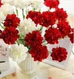 La seta artificiale del singolo fiore di seta dei garofani fiorisce il garofano di Floribunda