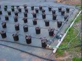 El PP la Cubierta Vegetal, algas barrera telas para fresa