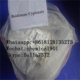 切断およびかさ張ることのための薬剤の未加工同化粉Boldenone Cypionate