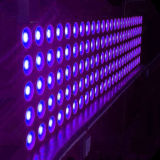 25PCS 매트릭스 곁눈 가리개 LED 단계 점화 RGBW 5X5 Cel 30W (LY-025N)