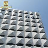 Il CNC ha fatto l'esterno che modella i comitati di alluminio per costruzione moderna