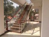 Коммерческие здания лестница с закаленным стеклом и деревянные Handrial