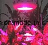 300W Full Spectrum crescer iluminação LED