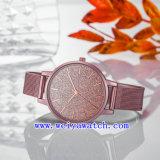 La conception personnalisée Watch Don classique de montres (WY-17025C)