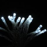 Indicatori luminosi stellati leggiadramente della stringa della nuova di arrivo di natale batteria esterna LED delle decorazioni