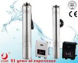 Protezione e regolatore in bianco e nero del motore della pompa dell'acqua di pozzo profondo di alta qualità C1-S1