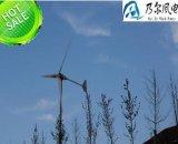 3kw 5kw 10kw 20kw van de Generator van de Wind van het Systeem van het Net met Zonnepanelen