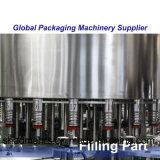 Machine de remplissage de bouteilles en verre (DCGF24-24-8B)