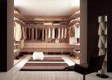 納戸/ワードローブ/衣服のキャビネットの現代デザイン