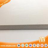 600X600mm super weiße rustikale Matt Fußboden-Fliese (JT6006D)