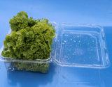 Contenitori impaccanti del fungo di plastica dell'animale domestico 500 grammi