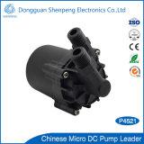 BLDC 12V Pumpe für Solat Heizungs-Zirkulations-Systeme