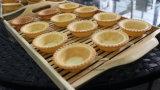 Коммерческие двойной цифровой Tartlets Shell Maker яйцо пуск машины принятия решений