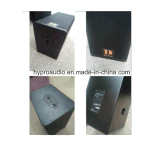 Ns12 solo 12 pulgadas sistema en línea de audio PRO activas y pasivas