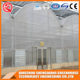 Het boog-Type van Afzet van de fabriek Plastic Serre met Hydroponic Systeem