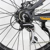 playa gorda eléctrica Crusier de la bicicleta de 36V 500W/bici Jb-Tde32L-F de la nieve