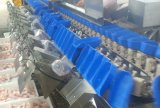 Fische Checken und essbare Meerestiere für das Sortieren der Maschinerie