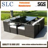 Meubles extérieurs de rotin de bâti en aluminium (SC-A7199)