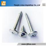 DIN7504 좋은 품질 Truss 헤드 각자 훈련 또는 두드리는 나사