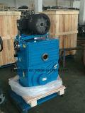 고열 진공 로를 위한 회전하는 피스톤 펌프 시스템