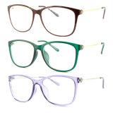 Het nieuwe Optische Frame van het Oogglas Eyewear van Ultem van de Stijl Plastic met Slank Roestvrij staal B7056