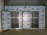 Celle frigorifere di nuovo disegno/conservazione frigorifera da vendere con il grande prezzo