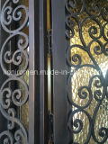 Двери красивейшей ковки чугуна внешние на ценах со скидкой