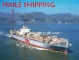 Fret maritime de Shenzhen en Suisse