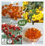 Óleo de semente Buckthorn Mar & Softgels antioxidante / / Óleo de Berry