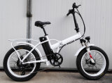 Bicicletta elettrica piegante con la gomma grassa